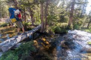 Trail 680, White Cloud Mountains.