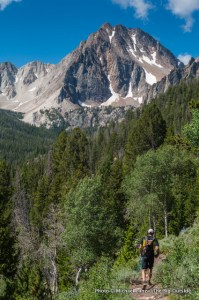 Trail 47 below Merriam Peak.
