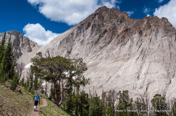 Trail 47 below Castle Peak.