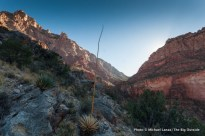 Red Canyon, New Hance Trail.