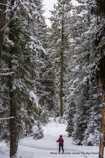 Ski touring Elkhorn Loop, Boise National Forest, Idaho.