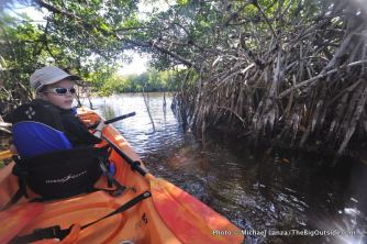 Mangrove tunnel, East River, on the outskirts of Everglades National Park.