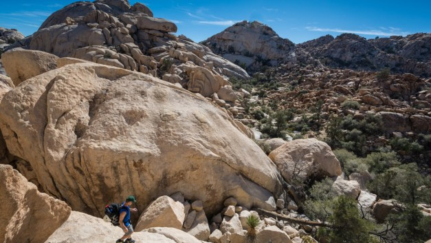 One Photo, One Story: Exploring Joshua Tree National Park