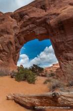 Pine Tree Arch, Devils Garden