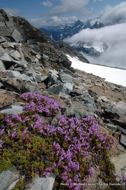 Near Sahale Mountain, North Cascades.