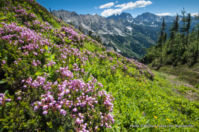 Along the trail to Spider Gap, Glacier Peak Wilderness, Washington.
