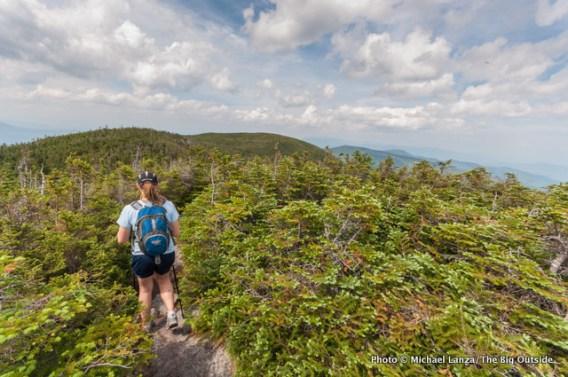 Skye on the Carter-Moriah Trail in the Carter Range.