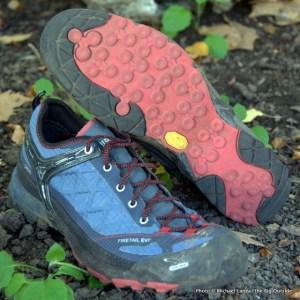 Salewa Firetail EVO GTX shoes