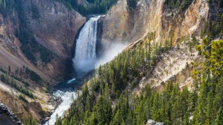 Ask Me: The 10 Best Short Hikes in Yellowstone
