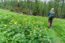 Hiking to Forca Rossa, Alta Via 2.