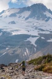 Gnarl Ridge, Timberline Trail, Mount Hood.