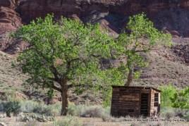 Wilson Ranch, Paria Canyon.