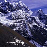 Trekkers en route to the Thorung La on Nepal's Annapurna Circuit.
