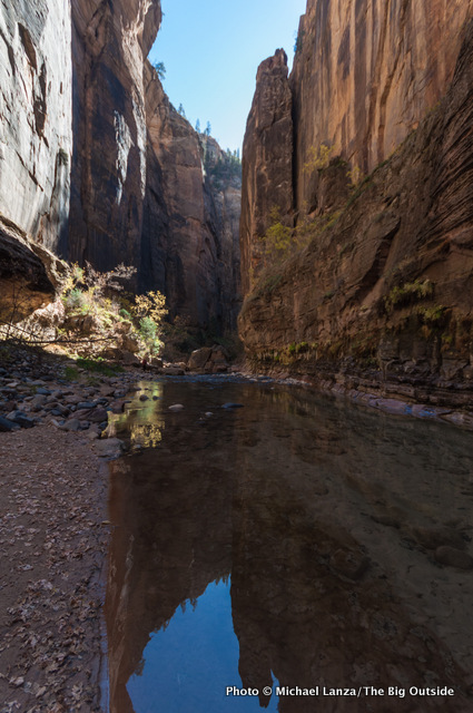 Day two in The Narrows, Zion National Park.
