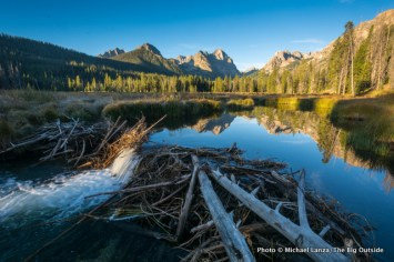 Beaver dam in Fishhook Creek Valley, Sawtooth Mountains, Idaho.
