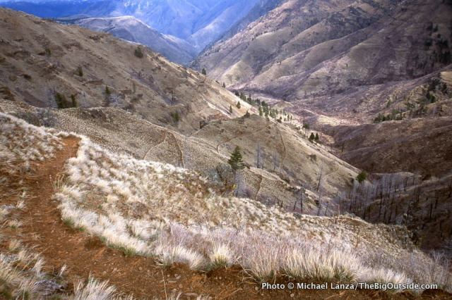 The Saddle Creek Trail in Hells Canyon, Oregon.