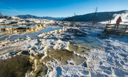 Photo Gallery: Yellowstone in Autumn