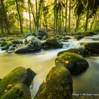 Forney Creek, Great Smoky Mountains National Park.