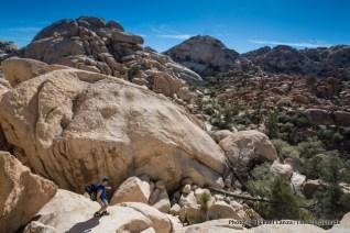 Hiking in the Wonderland of Rocks, Joshua Tree National Park.