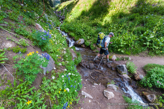 Wildflowers and a creek along the Timberline Trail, Mount Hood, Oregon.