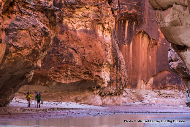 In the narrows of Paria Canyon.