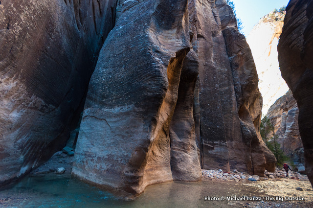 David Gordon on day one in The Narrows, Zion National Park.