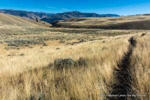 Blacktail Deer Creek Trail.