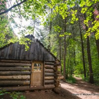 Fife Cabin, Taylor Creek Trail.