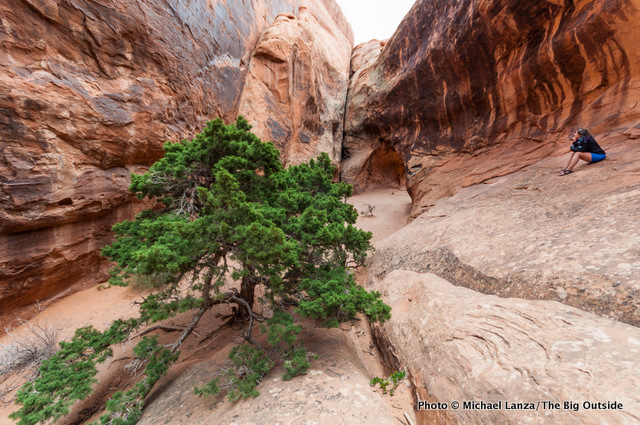 A tiny canyon behind Navajo Arch in Devils Garden, Arches National Park.