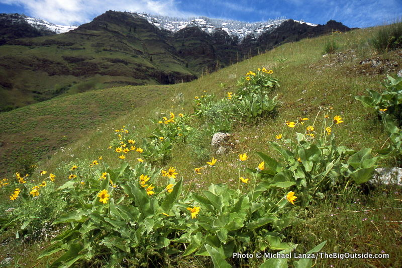 Ask Me: Where Should We Dayhike and Backpack in Hells Canyon?