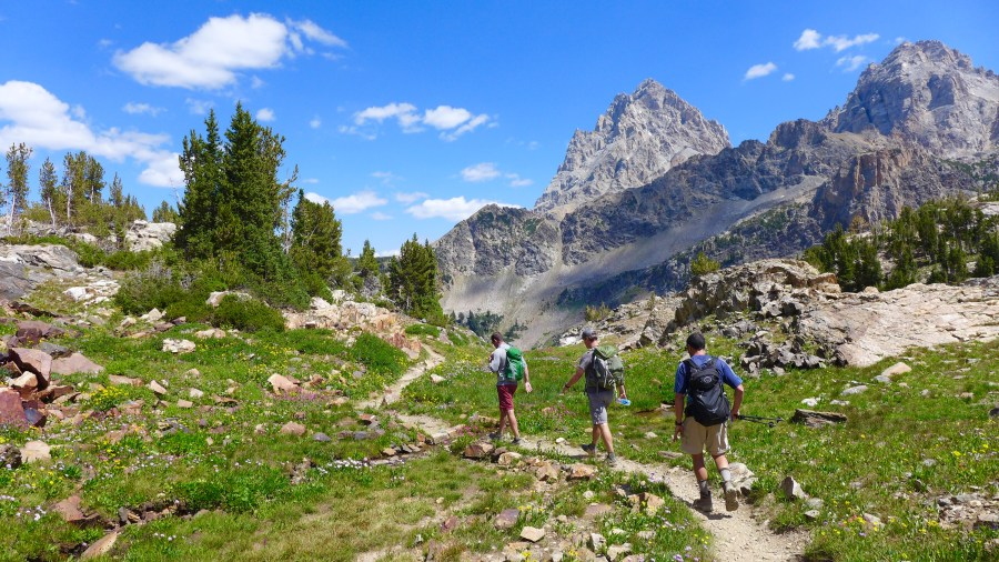 Hikers in South Fork Cascade Canyon, Grand Teton National Park.