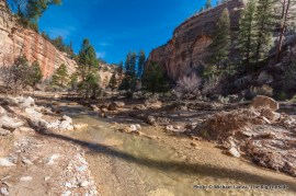 North Fork of the Virgin River above Zion's Narrows.
