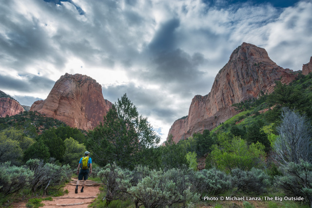 Hiking the Taylor Creek Trail, Zion National Park.