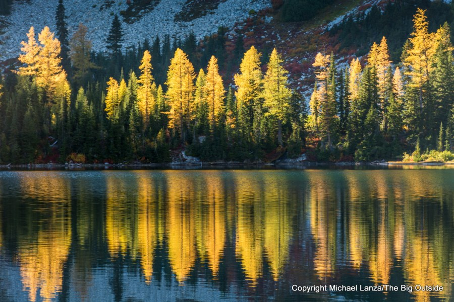 Larch trees reflected in Rainbow Lake in the North Cascades National Park Complex.