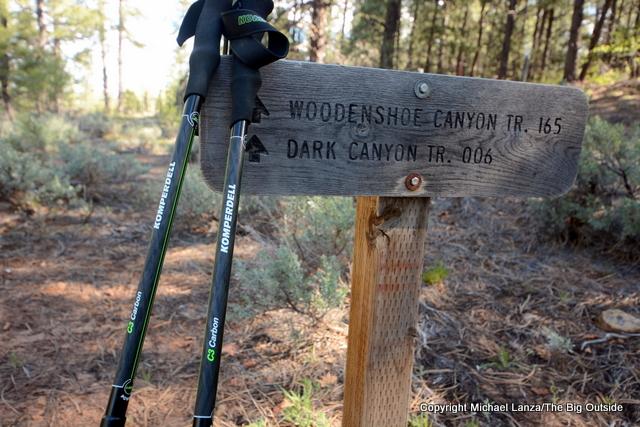 Komperdell C3 Carbon Power Lock trekking poles.