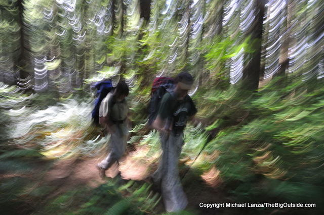 Backpackers on the overland trail around Hoh Head on the southern Olympic coast.