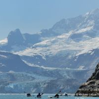 Sea kayaking in Johns Hopkins Inlet, Glacier Bay National Park.