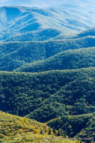 The view from Devils Courthouse, Pisgah National Forest, N.C.