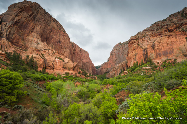 The Kolob Canyons in Zion National Park.