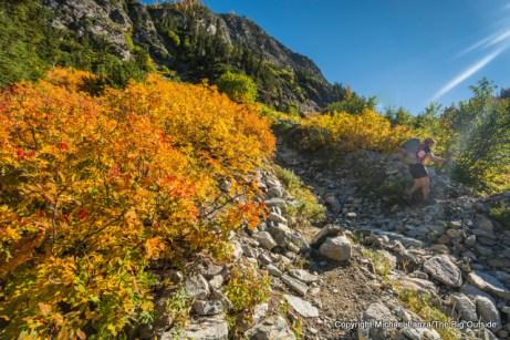 South Fork Bridge Creek Trail, Lake Chelan NRA.