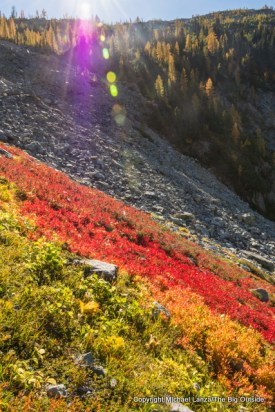 Foliage color near Rainbow Pass, Lake Chelan NRA.