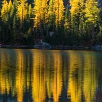 Larch trees reflected in Rainbow Lake, Lake Chelan NRA.