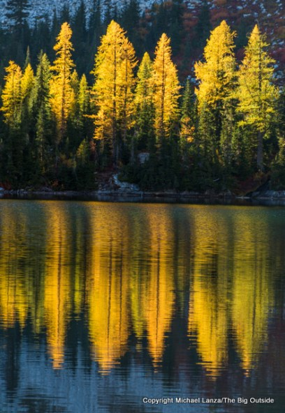 Larch trees reflected in Rainbow Lake, in Washington's North Cascades.