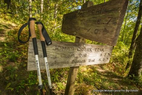 Welch Ridge Trail, Great Smoky Mountains N.P., N.C.