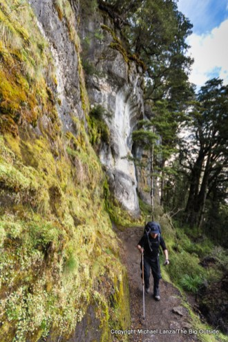 Hiking the Kepler Track to Luxmore Hut, Fiordland National Park.