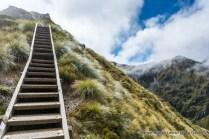 Hiking the Kepler Track, Fiordland National Park.