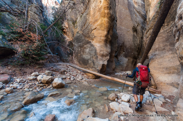 Day one in the upper Narrows, Zion National Park.