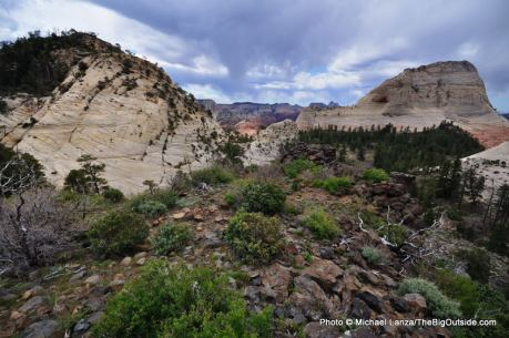 Northgate Peaks overlook, Zion National Park.