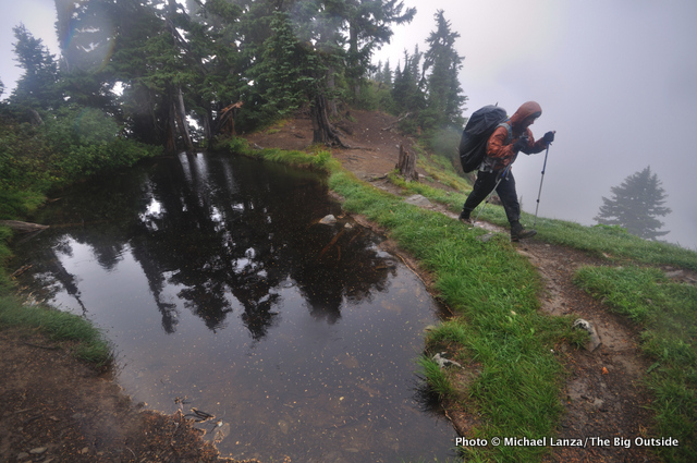 A backpacker on a rainy and windy day high in the Olympic Mountains.