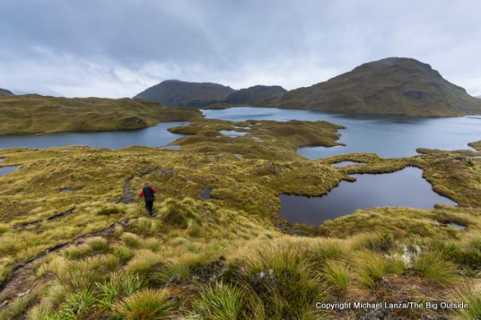A hiker above Lake Horizon on the Dusky Track in the Pleasant Range, Fiordland National Park, New Zealand.